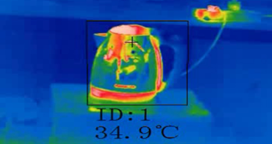 Hikvision Thermographic Cameras